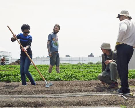 Matt and RIF participants tilling a row for planting.